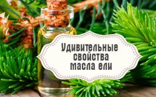Уникальные свойства масла ели